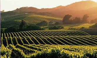 http://historicaldesign.com/wp-content/uploads/2014/11/Napa-Valley1.jpg