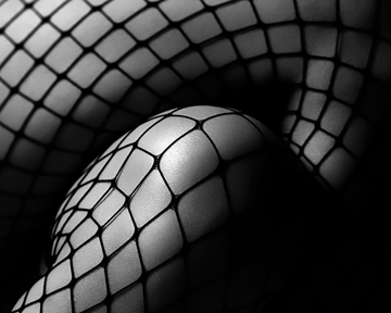 http://historicaldesign.com/wp-content/uploads/2014/11/fishnet-michael-carroll.jpg