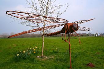 http://historicaldesign.com/wp-content/uploads/2015/03/1-Br-steel-dragonfly.jpg